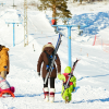 Porte-skis enfant SkiBack - wantalis